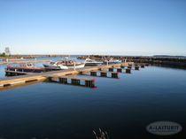 港口浮桥码头 / 漂浮式 / 系泊 / 用于海港