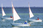 单人帆艇 / 双人 / 训练用 / 独桅艇