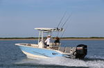 舷外敞开艇 / 中央控制台 / 开放式 / de pêche sportive