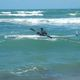 硬质皮划艇 / 海洋 / 探险 / 单人