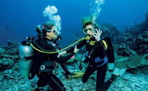 潜水、潜水捕鱼