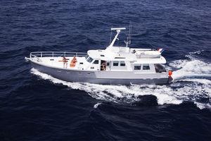 传统型机动游艇