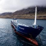 特殊用途驳船 / 支线