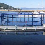 水产养殖鱼类网箱 / 塑料 / HDPE / 圆形