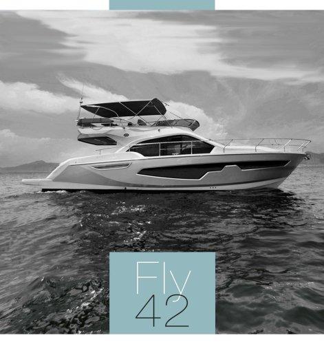FLY 42